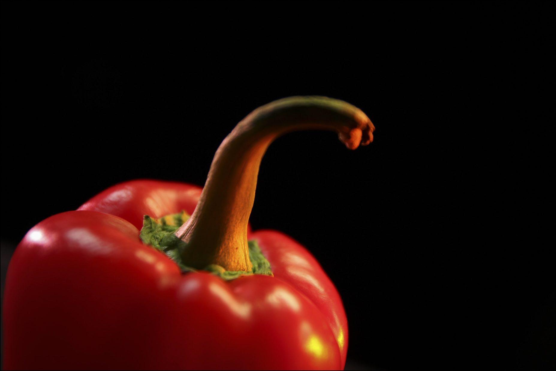 Legumes-site-3