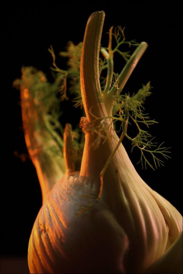 Legumes-site-4