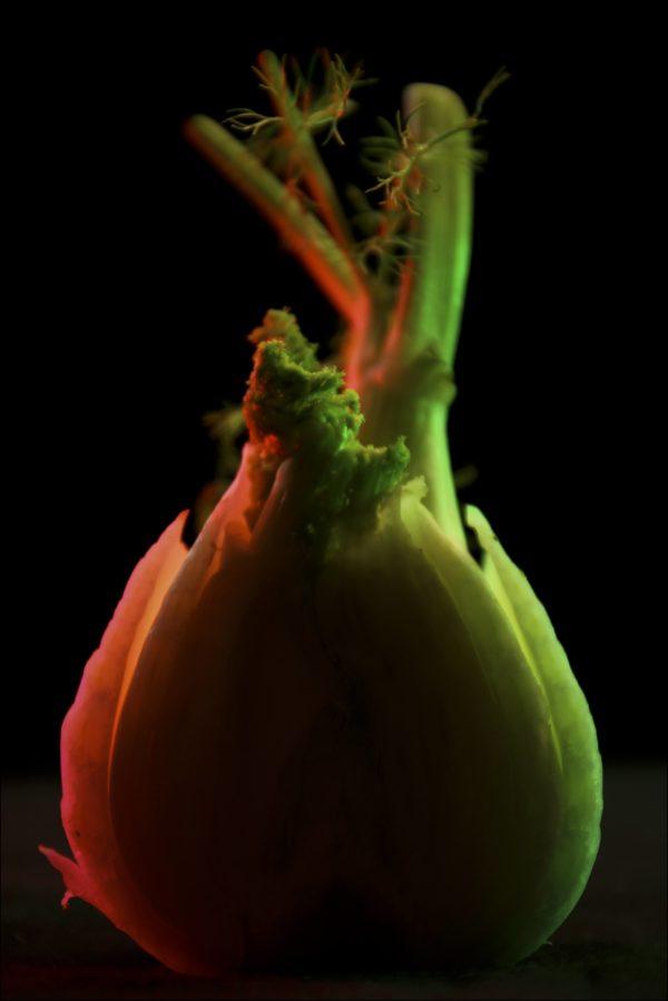 Legumes-site-9